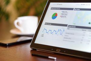 Web Sitesi Analizi - Raporu