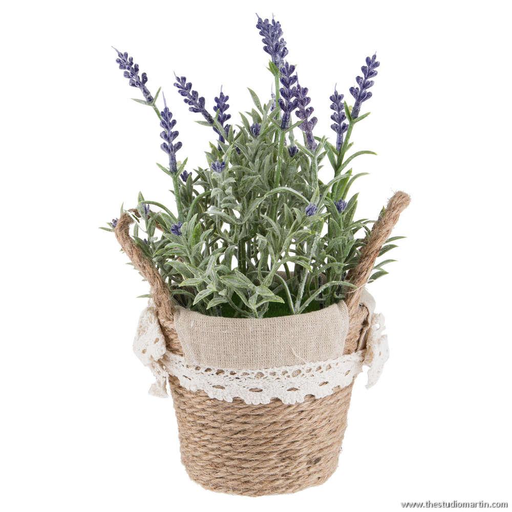 Çiçek Ürün Fotoğraf Çekimi