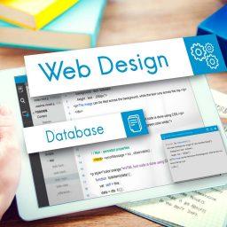 Dinamik Web Sitesi Nedir ?
