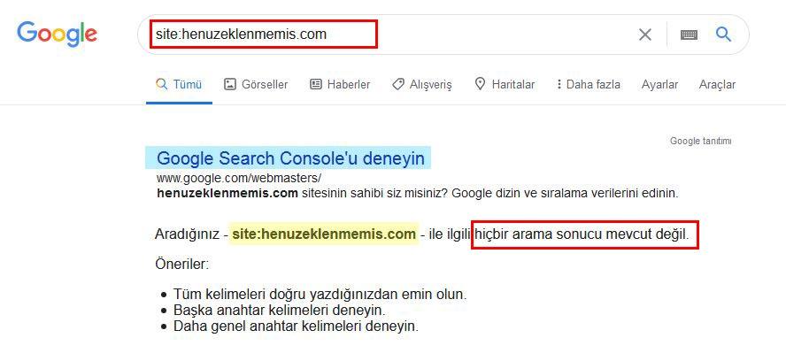 Google'a eklenmemiş site sonucu