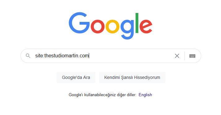 Google'da var mıyız?